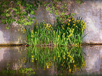 Photograph - Reflections Of Spring by Lucinda Walter