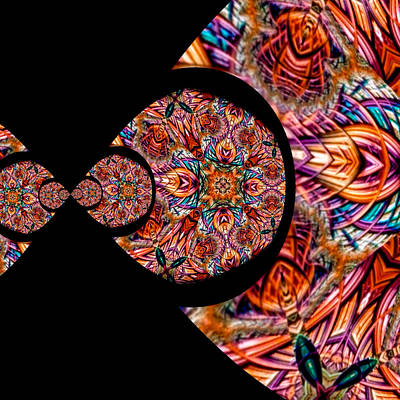 Circle In The Square Digital Art - Reflections On Unwillful Acceptance by Susan Maxwell Schmidt
