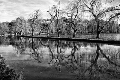 Photograph - Reflections Of Winter by Shirley Mitchell
