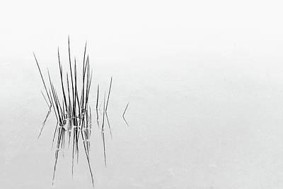 Minimalism Photograph - Reflections by Olavo Azevedo