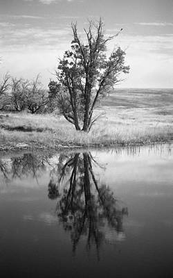 Photograph - Reflections On A Prairie Pond by HW Kateley