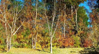 Cafe Art Photograph - Reflections On Fall by Ludwig Keck