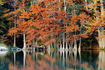 Reflections On The Frio River - Garner State Park - Texas Hill Country Art Print by Silvio Ligutti