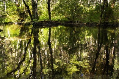Photograph - Reflections Two by Wade Crutchfield