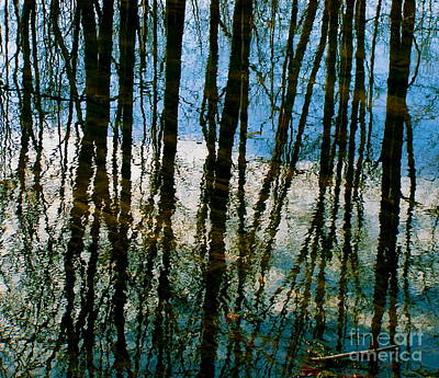 Photograph - Reflective Blues by Carolyn Kami Loughlin