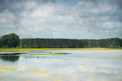 Photograph - Reflective Field by Jai Johnson
