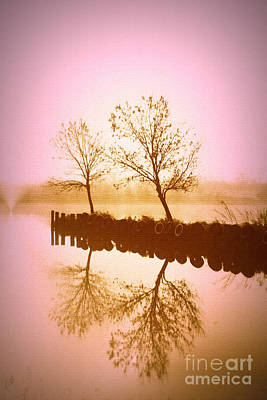 Photograph - Reflective Glow by Julie Lueders