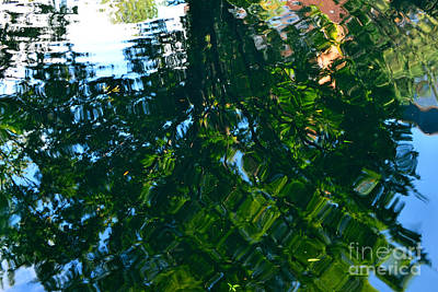 Photograph - Reflective Pond by Third Eye Perspectives Photographic Fine Art