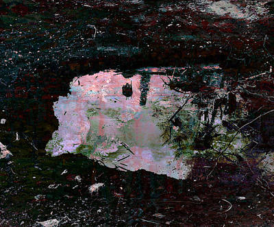 Reflective Skylight On A Small Pond Of Water # 1 Art Print by Miguel Conesa Osuna