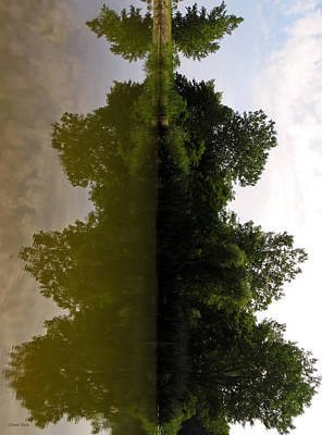 Photograph - Reflective Symmetry  by Shawna Rowe