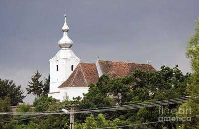 Owls - Reformed Castle Church by Odon Czintos