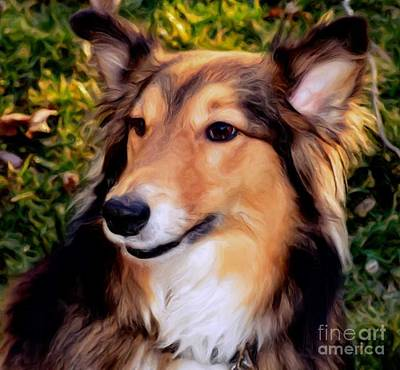 Art Print featuring the photograph Dog - Collie - Regal Shelter Dog by Luther Fine Art