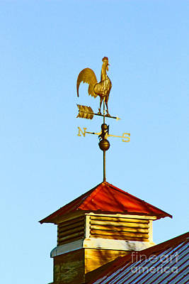 Photograph - Regal Weathercock by Dale Jackson