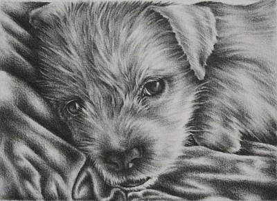 Reginald Art Print by Lisa Marie Szkolnik