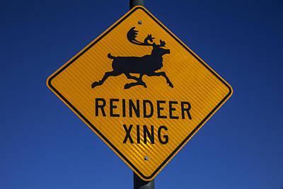 Reindeer Xing Art Print by Garry Gay