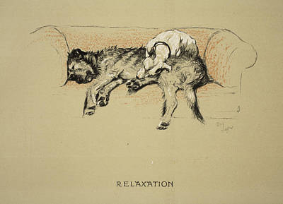 Cute Puppy Drawing - Relaxation, 1930, 1st Edition by Cecil Charles Windsor Aldin