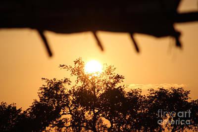 Relaxed Sunset Art Print