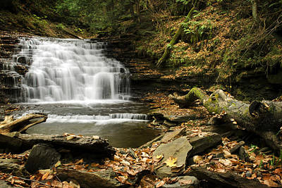 Photograph - Relaxing Cove Waterfall by Christina Rollo