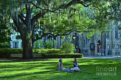 Photograph - Relaxing Under The Moss 2 by Allen Beatty
