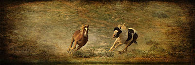 Photograph - Relentless Chase by Wes and Dotty Weber