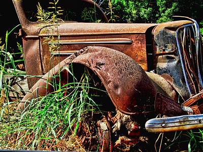 Photograph - Relic by Ron Roberts