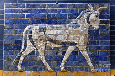 Relief From Ishtar Gate In Babylon Art Print by Robert Preston