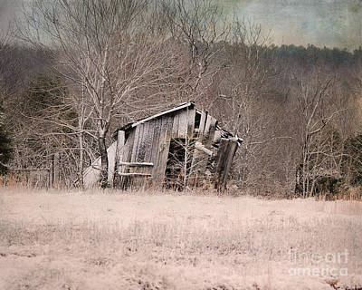 Photograph - Remains Of Winter by Jai Johnson