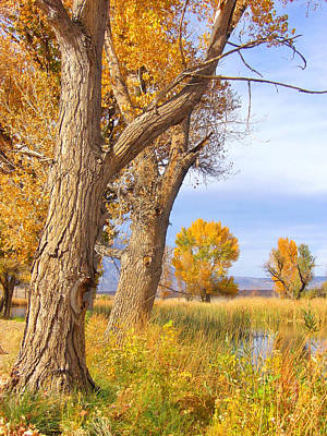 Photograph - Remembering Autumn by Marilyn Diaz
