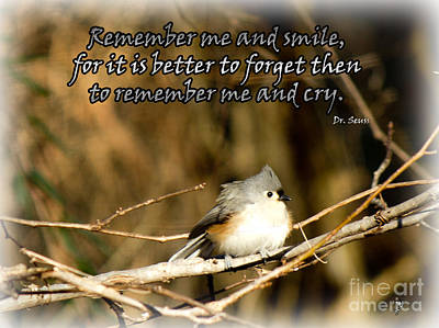 Photograph - Remember Me by Sandra Clark