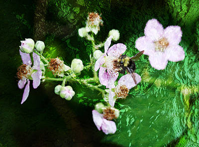 Photograph - Remembering Bees 2 by Marie Jamieson