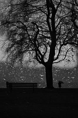 Rainy Day Photograph - Remembering Him by The Artist Project