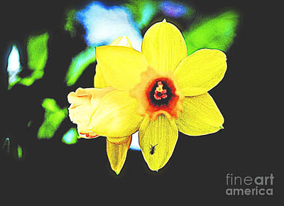 Photograph - Remembering Spring by Luther Fine Art