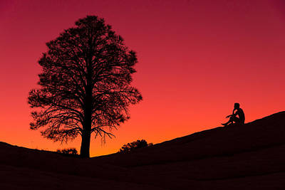 Red Tree Photograph - Reminiscing by Chad Dutson