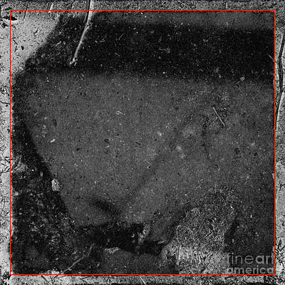 Photograph - Remnants II by Paul Davenport