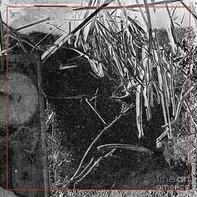 Photograph - Remnants X by Paul Davenport