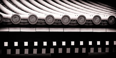 Photograph - Repetition by Brad Brizek
