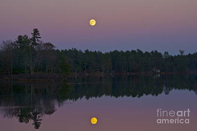 Art Print featuring the photograph Replacing The Sunset by Alice Mainville