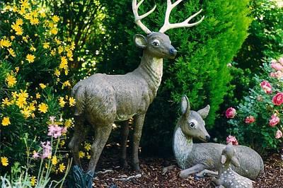 Replica Of Deer Family Art Print by Robert Bray