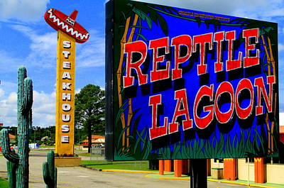 Photograph - Reptile Lagoon by Randall Weidner