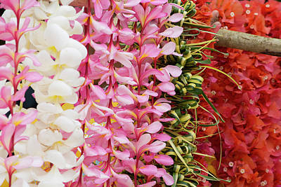 Lei Photograph - Republic Of Vanuatu, Torres Islands by Cindy Miller Hopkins