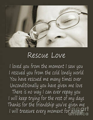 Felines Photograph - Rescue Love Adoption by Andee Design