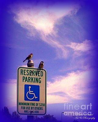 Photograph - Reserved by Bobbee Rickard