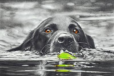 Reservoir Dog Art Print