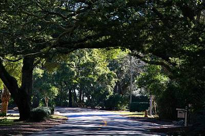 Photograph - Residential Street St Simons Island by Kathryn Meyer