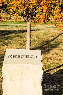Photograph - Respect On Stone In Autumn by Imagery by Charly