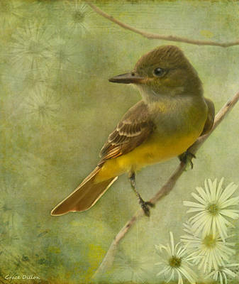 Flycatcher Digital Art - Rest For A Moment by Grace Dillon