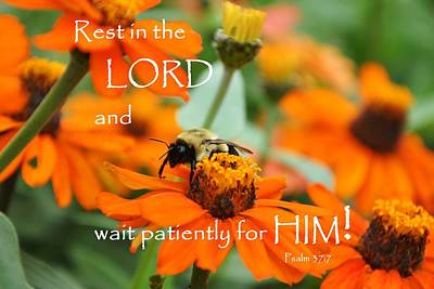 Rest In The Lord Art Print by Barbara Stellwagen