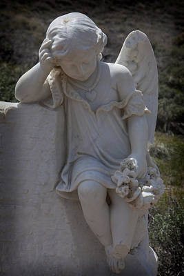 Photograph - Resting Angel by Garry Gay