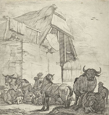 Shed Drawing - Resting Cattle On A Farm, Jan Van Ossenbeeck by Jan Van Ossenbeeck And Giovanni Giacomo Rossi