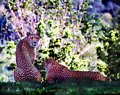 Digital Art - Resting Cheetahs by Steve Karol